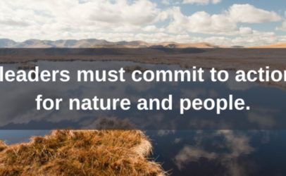Hivos and fellow organizations call for bold action to halt and reverse biodiversity loss