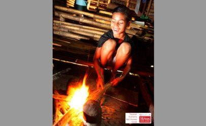 Yayasan Hivos organizational profile
